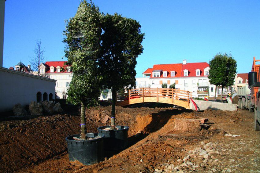 Plantation d'arbres : plus d'une centaine en automne