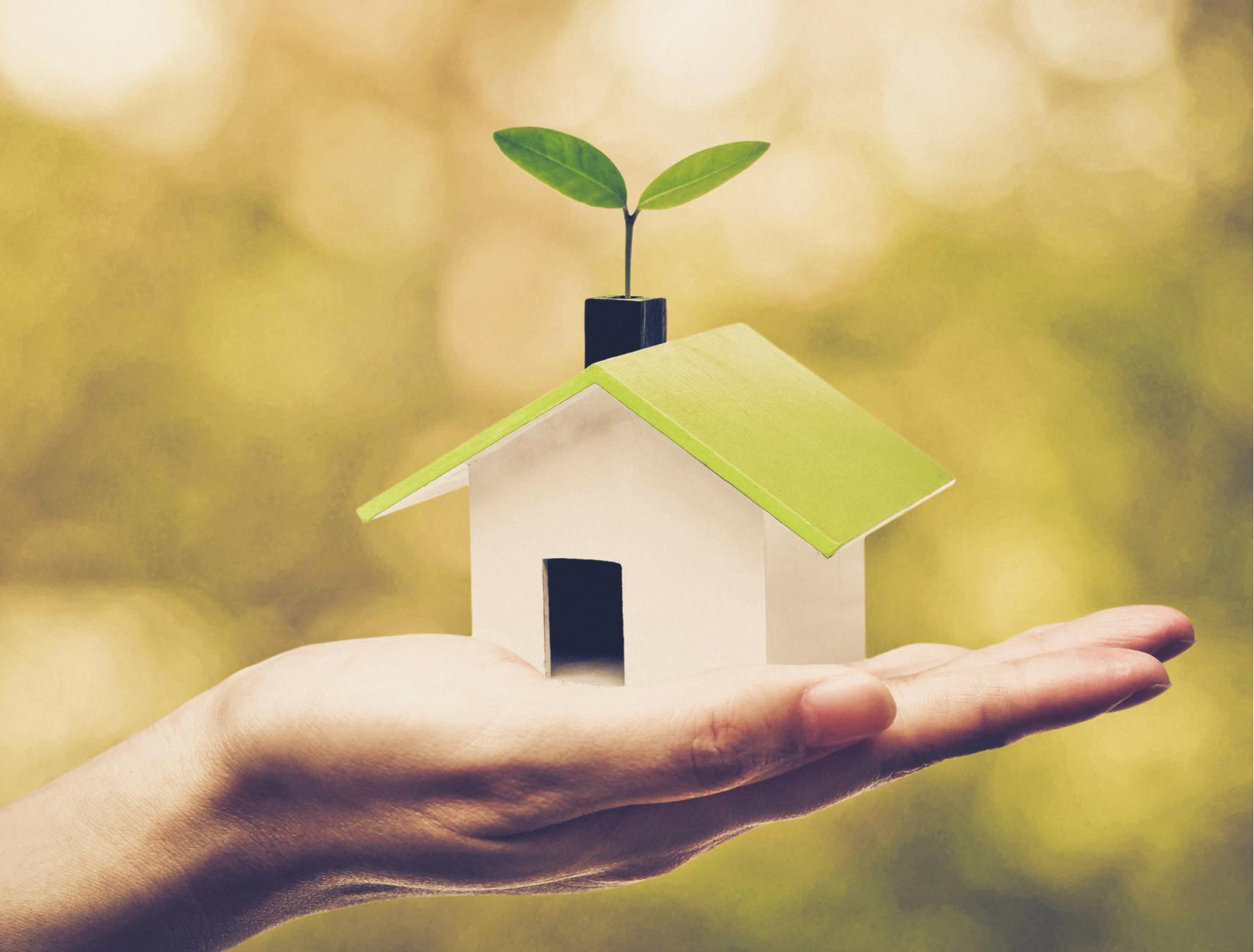 PROJET 10 : Livret éco-responsable