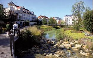 PROJET 7 : Plaquette sur la rivière