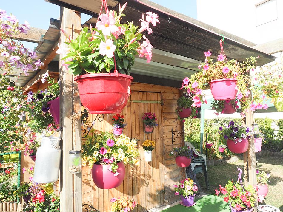 Ville fleurie : les conseils du jardinier